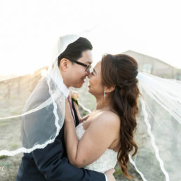 wine country wedding videography